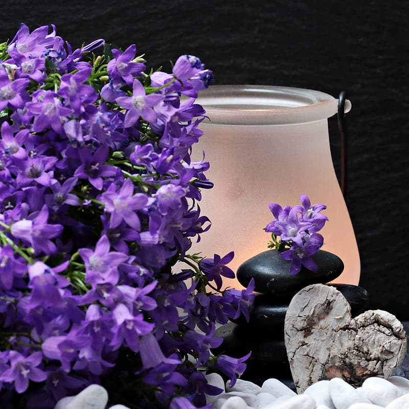 Purple petaled flower beside black stone near frosted glass candle holder
