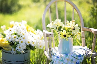 Selective focus photography of yellow and white petaled flowers on chair