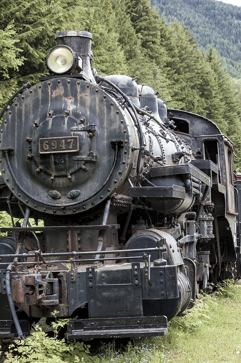 Photography of black train surrounded by forest trees outdoors