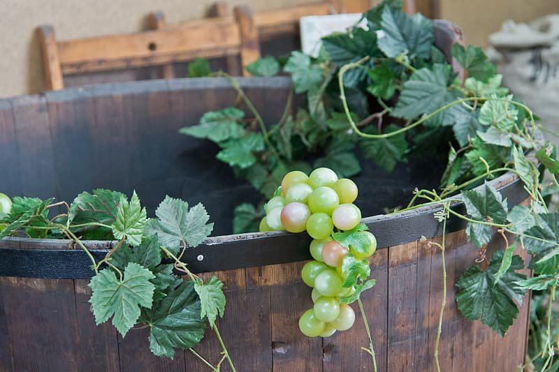 Grape fruit in wooden bucket
