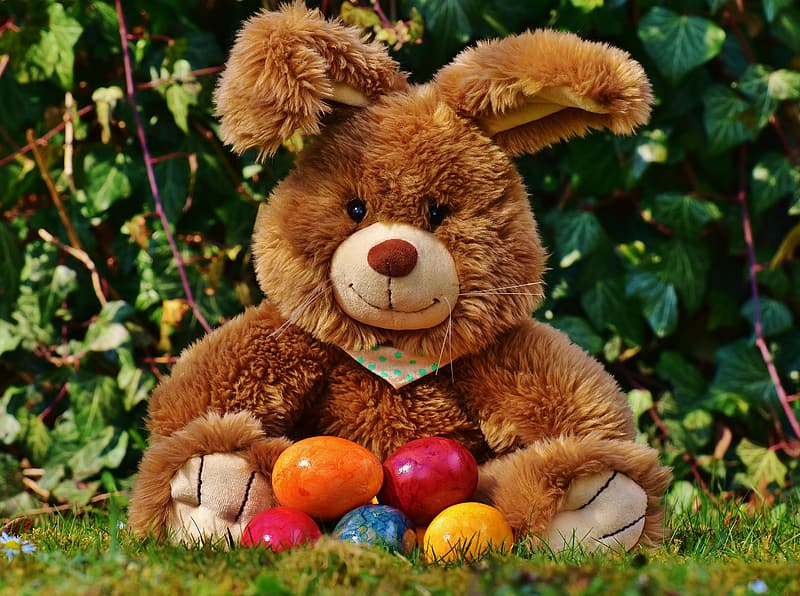 Photo of brown teddy bear with Easter bunny egg