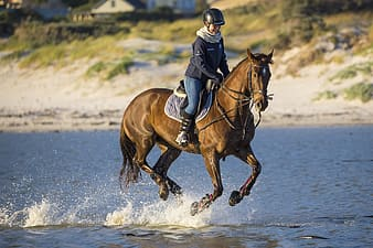Man in black long sleeve shirt riding brown horse on water during daytime