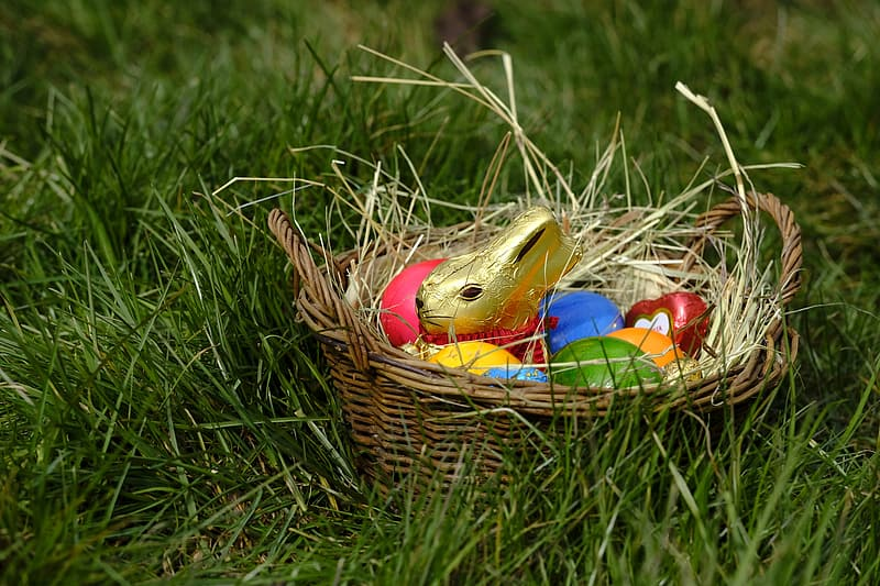 Easter egg in brown woven basket on green grass