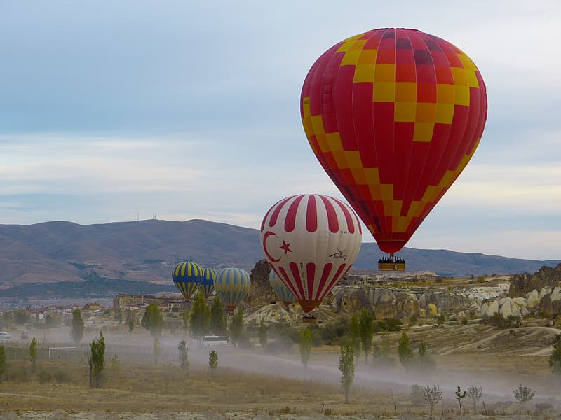 Hot air balloons flying in the sky during daytime
