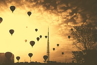 Hot air balloons flying on the sky