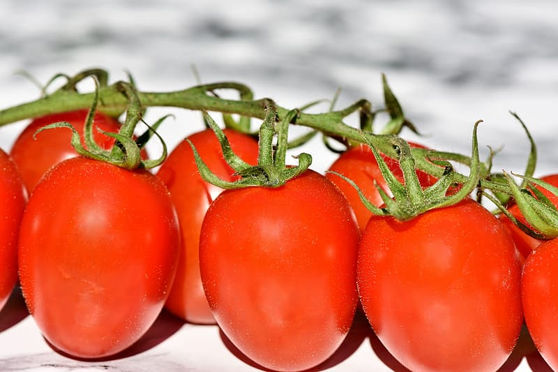 Bundle of red tomato