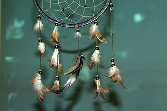 Brown and black dream catcher