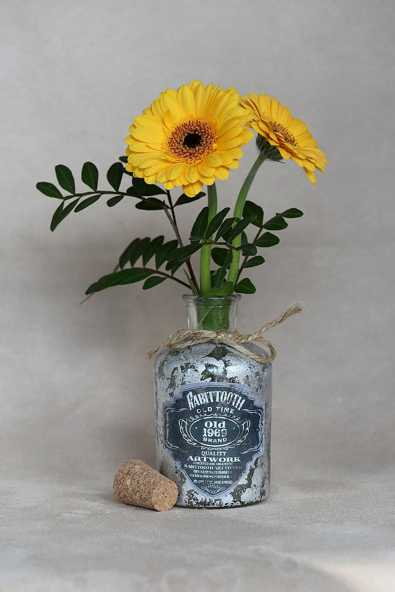 Yellow sunflowers on Rabittooth glass bottle
