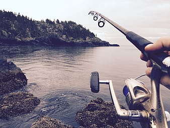 Person holding gray and black fishing rod on body of water