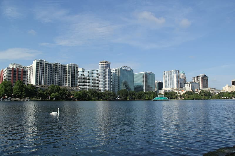 City buildings and body of water