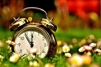 Brown double bell alarm clock on green field