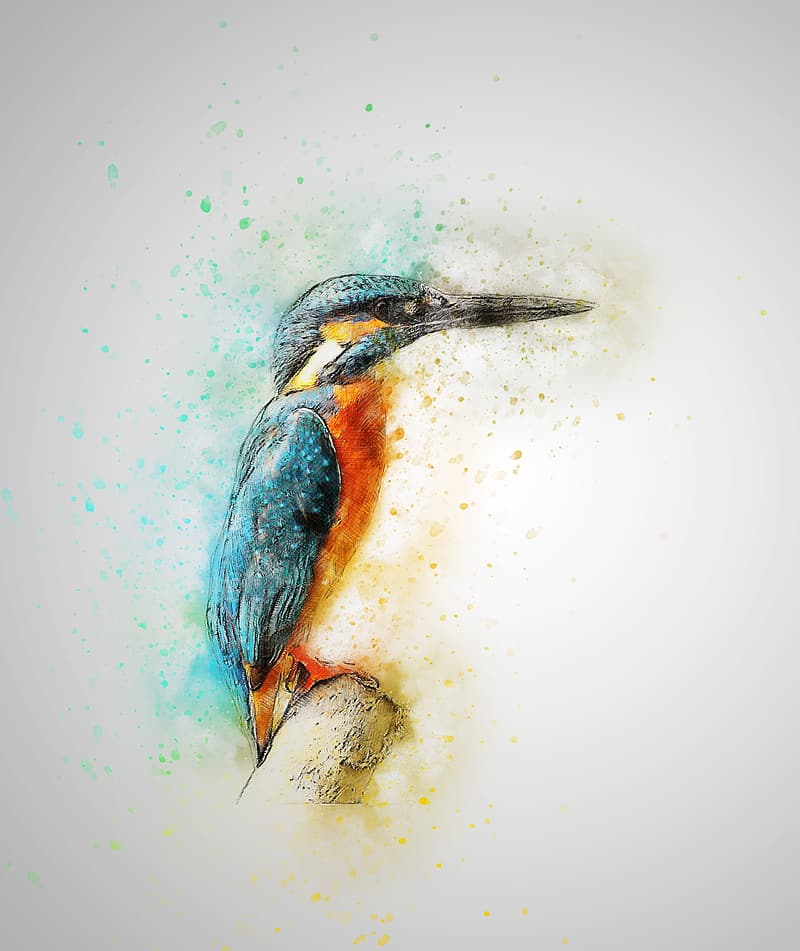 River kingfisher painting