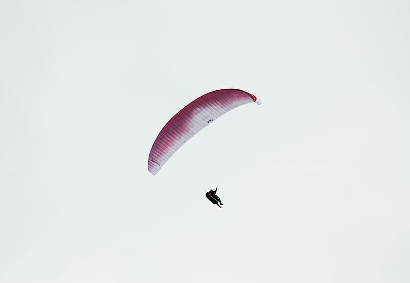 Person in black and white parachute