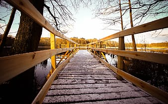 Brown wooden foot bridge