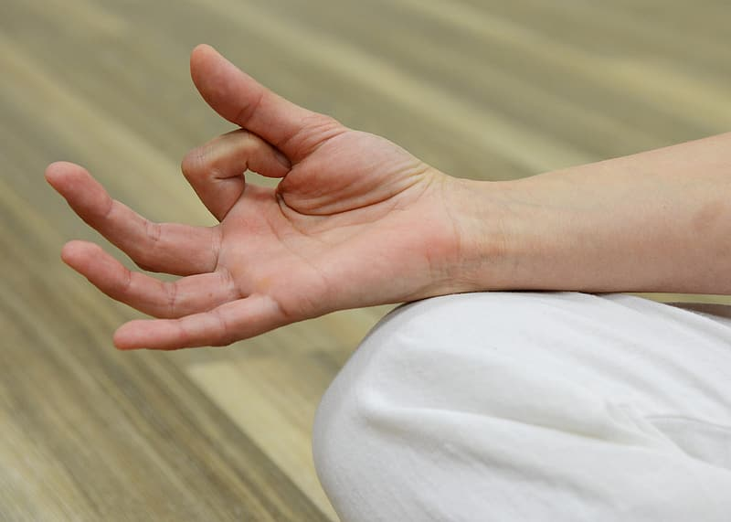 Close up photo of right human hand