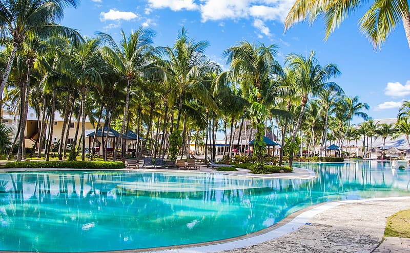 Large pool between green coconut trees under blue and white sky at daytime