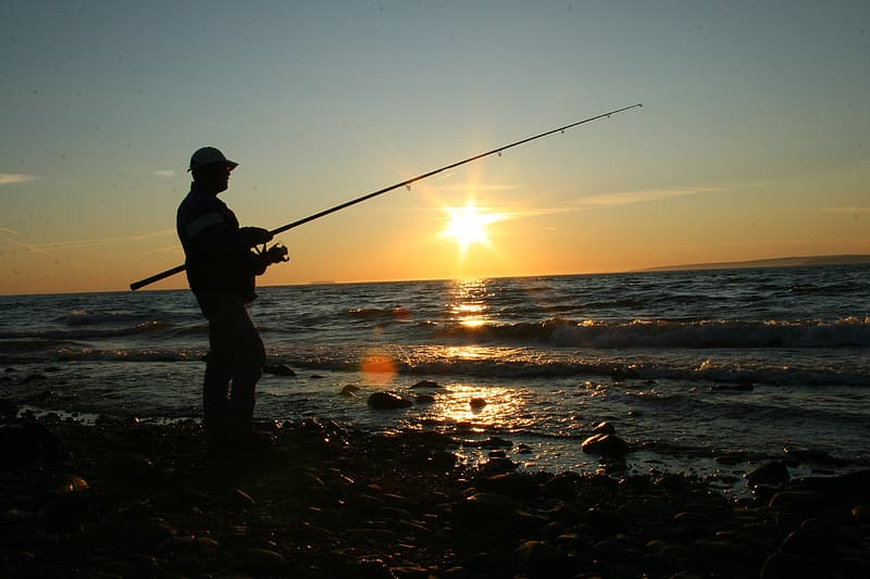 Silhouette of person holding fishing rod on beach shore during sunset