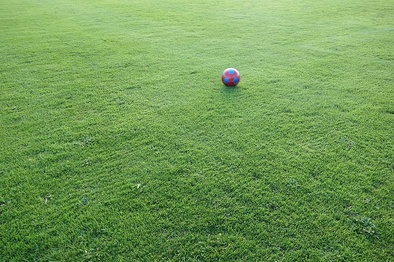 Soccer ball on grass lawn