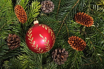 Red Christmas bauble beside brown pine cones