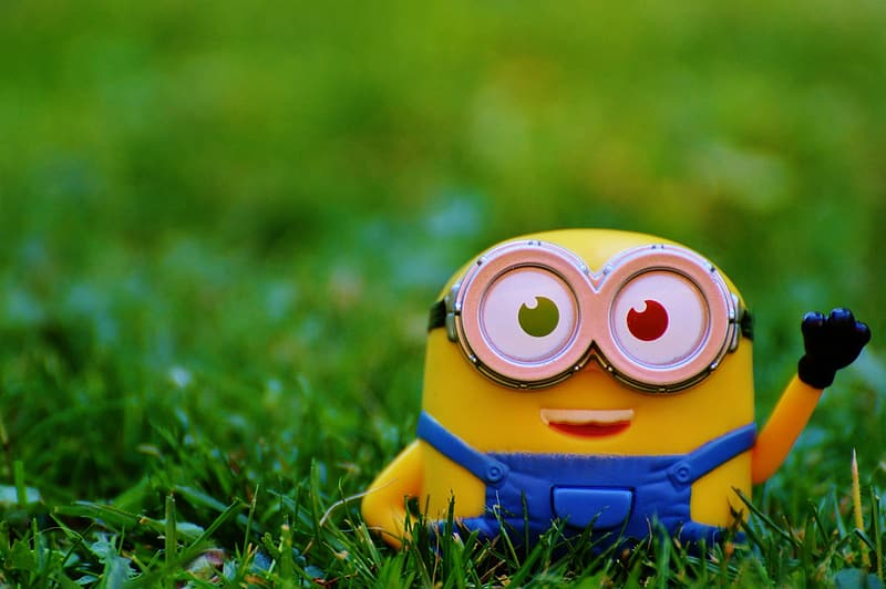 Selective focus photography of Minion on grass