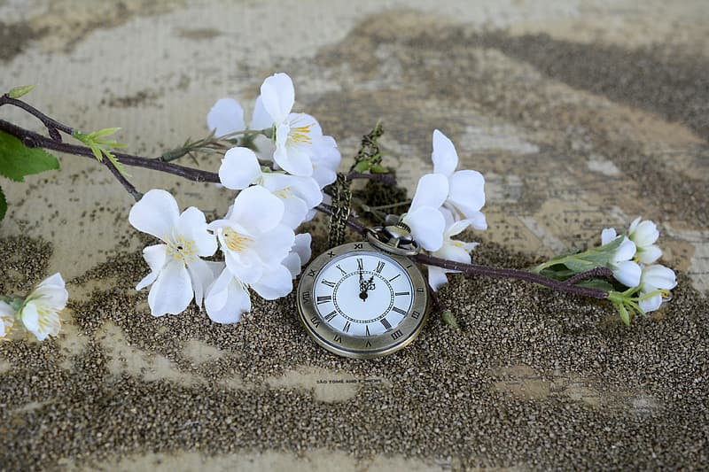 Round silver-colored pocket watch and white flowers on sand