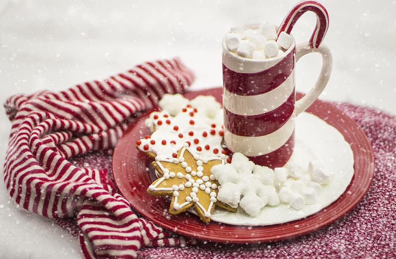 White and red ceramic mug on saucer with cookies