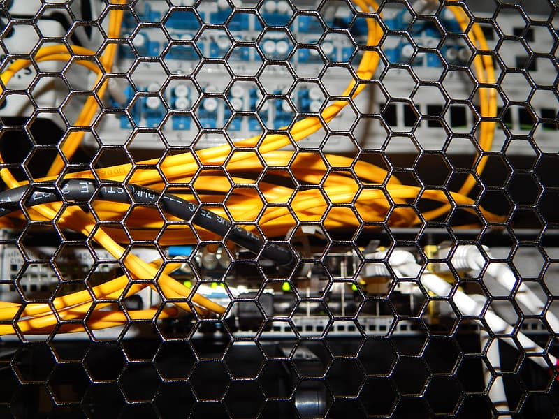 Yellow and black net with yellow and white light