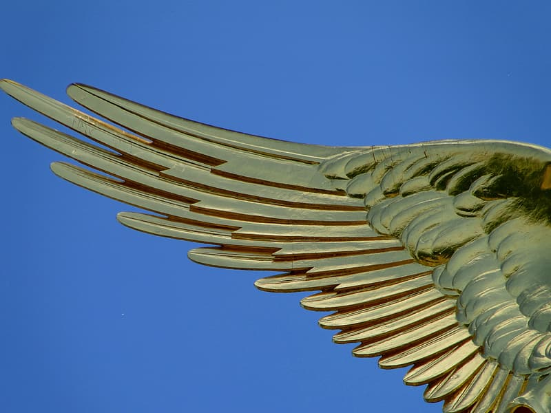 Photo of gold wing sculpture