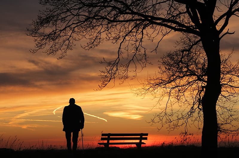 Silhouette of person with cane near bench