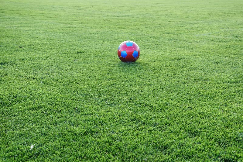Red and blue soccer ball on grass field