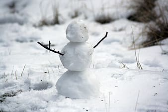 Selective focus photography of snowman on ic