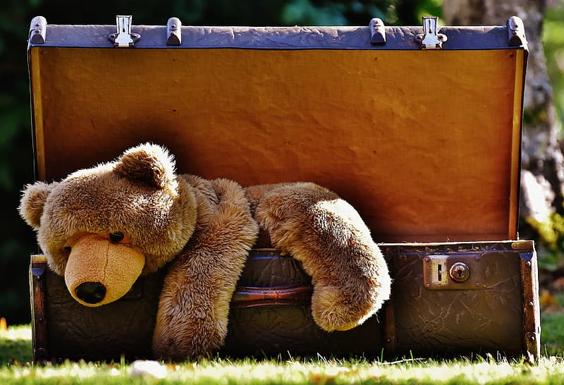 Brown bear plush toy on black steamer trunk