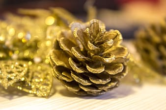 Pine cones covered in gold glitter take on lighted room