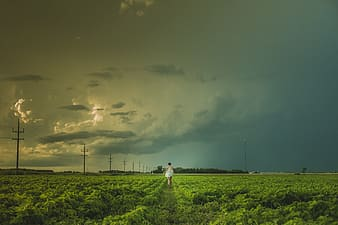 Person in white shirt walking on green grass field under gray clouds