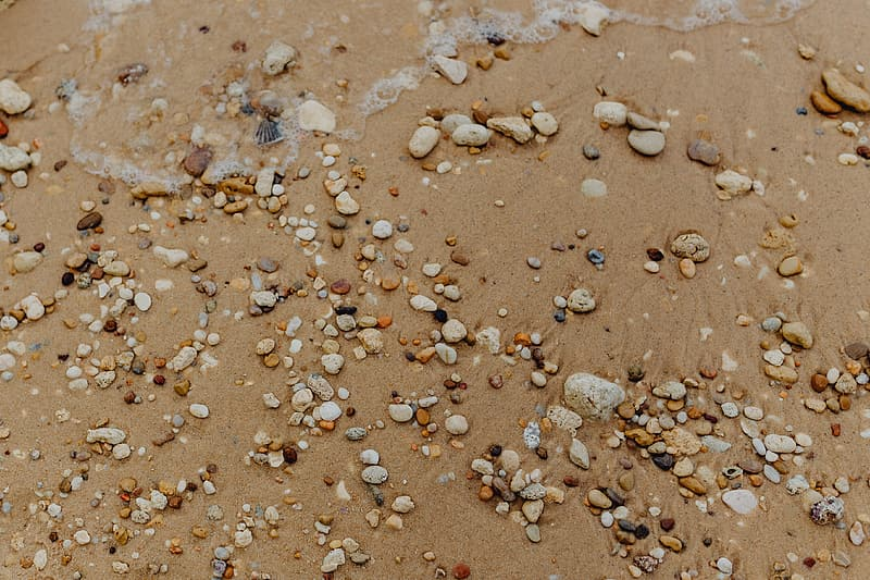 Sand beach background with sea shells & pebbles - many round small stones