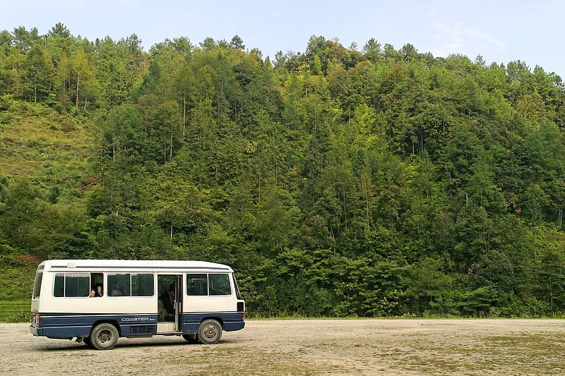 White and blue bus near green trees
