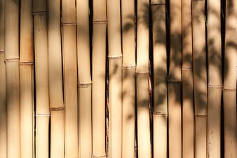 Brown bamboo stick lot