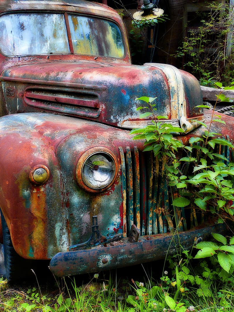 Photo of rusted vehicle beside plants