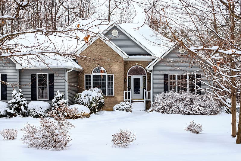 Snow covered house near bare trees