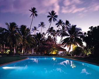 Outdoor pool with trees during night time
