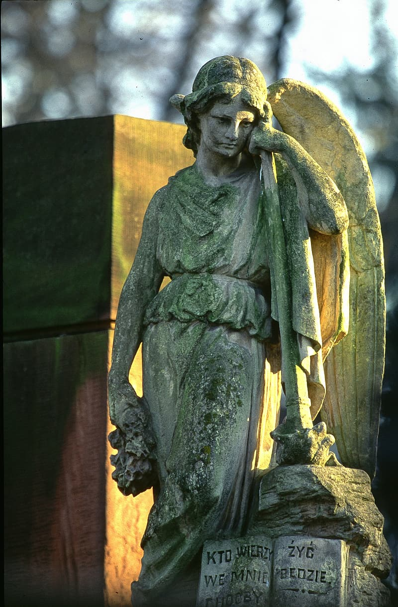 Gray concrete statue of angel during daytime