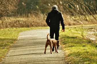 Man in black jacket running with brown short coated dog on road during daytime