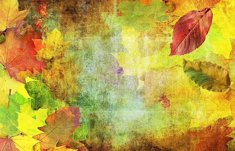 Assorted leaves painting