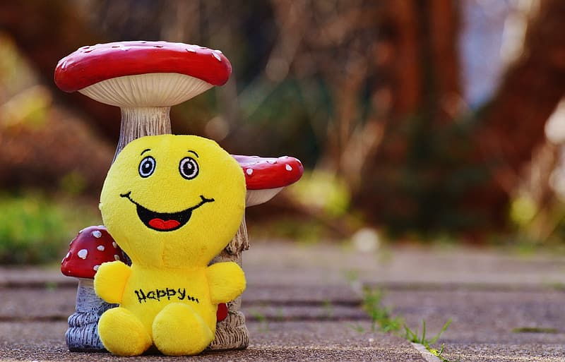 Yellow and red plush toy on brown concrete pavement
