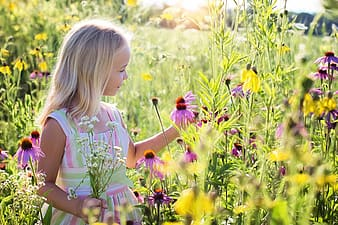 Close photo of girl wearing pink and white stripe crew neck sleeveless dress while looking at purple daisy flowers during sunrise