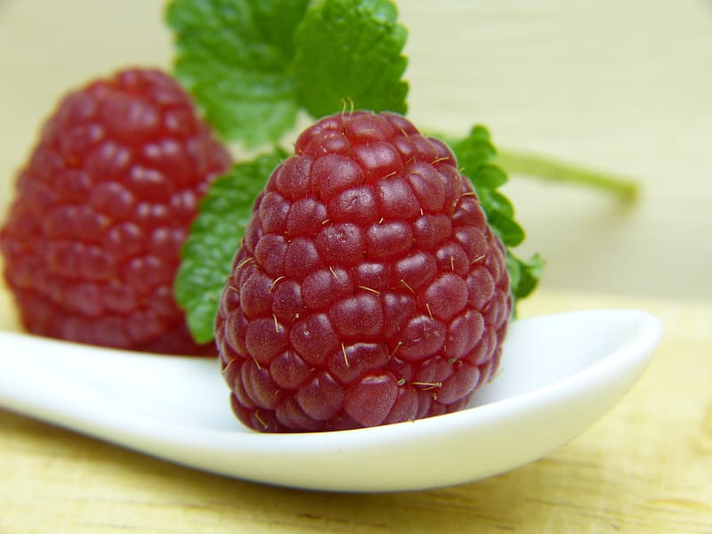 Two red raspberries on white ceramic tray