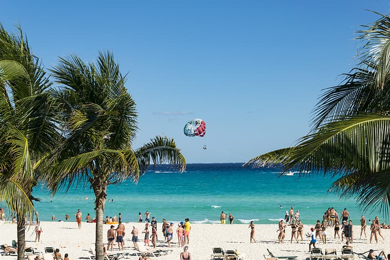 People on white sand beach shore during daytime