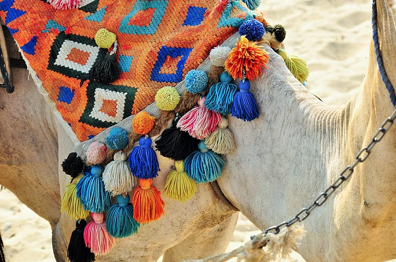 Assorted-colored knitted camel saddle