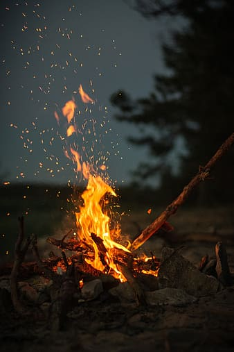 Shallow focus photography of bonfire