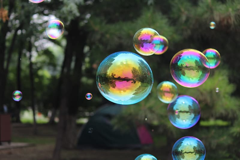 Photography of bubbles near green rees